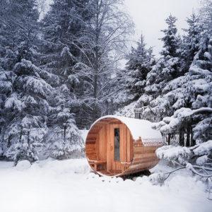 sauna exterior madera nieve