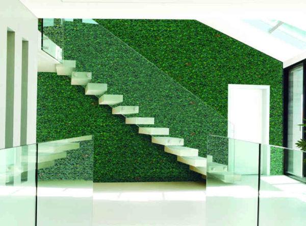Jardín vertical Liptus 50x50cm de Catral