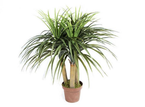 Planta artificial Nolina Mini de 75 cm de Catral